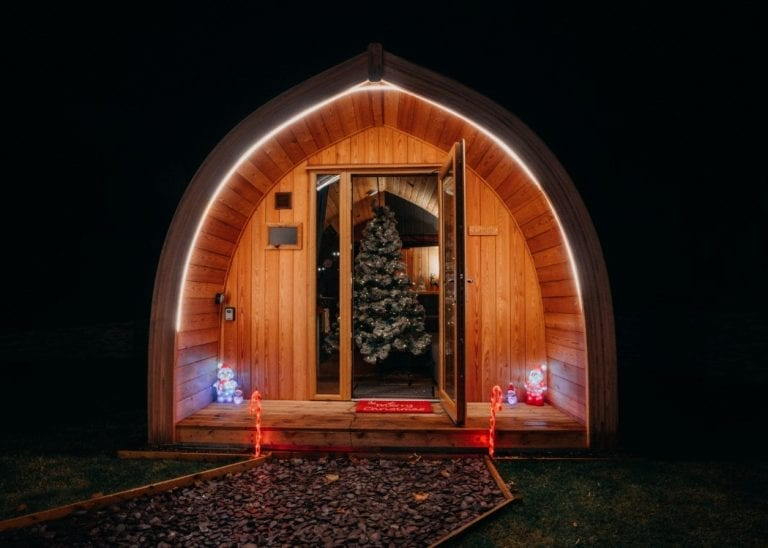 Christmas tree in pod with festive lighting