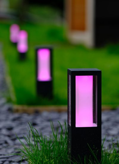 purple lighting lining the paths on site